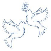 Vector Doves. Hand drawn Dove of Peace illustration