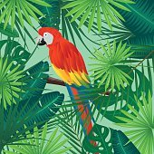 Vector Background with Tropical Leaves, Flowers and a Parrot