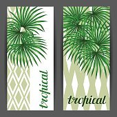 Banners with palms leaves. Decorative image tropical leaf of palm