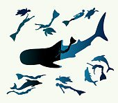 Adventure freediving. Collection of free divers and animal.