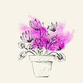 Hand drawn cyclamen on bright pink watercolor background