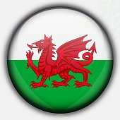 Shine button flag - Wales