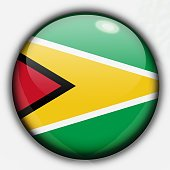 Shine button flag - Guyana