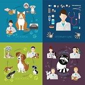 Veterinary flat set with cat and dog hospital medicine clinic