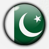 Shine button flag - Pakistan