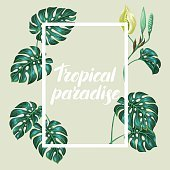 Frame with monstera leaves. Decorative image of tropical foliage and