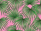 Seamless pattern with palms leaves. Decorative image tropical leaf of