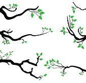 tree branches set of vector illustration