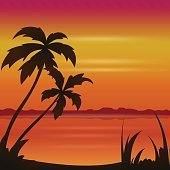 Sunset ocean summer beach with tropical palm tree over horizon