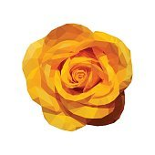 polygonal yellow rose top view completely open