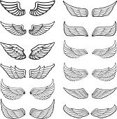 Set of vintage wings isolated on white background.