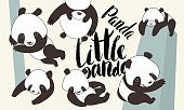 Cartoon panda bear set with lettering