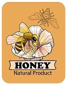 Bee an Honey. logo and lables. Vector illustration.