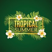 Tropical summer design poster template.  vacation with leafs and flowers
