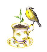 Bird, spring sprout - green growing plant in teacup. Watercolor