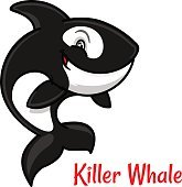 Cartoon black and white killer whale or orca