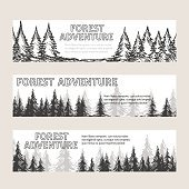 Monochromic horizontal banners with pine forest