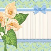 Greeting card with Lily Calla flowers
