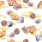 Seamless seashell and sand pattern on white background. Watercolour